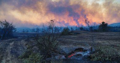 Kebakaran Hutan di Turki Meluas, 3 Warga Dilaporkan Tewas